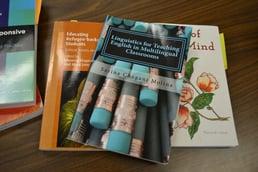 books-soles-TESOL-blog